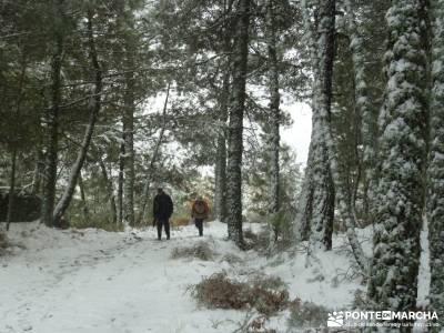 Valle de Iruelas - Pozo de nieve - Cerro de la Encinilla;senderismo en cordoba club senderista murci